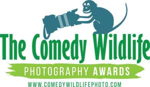 comedy wildlife logo sm