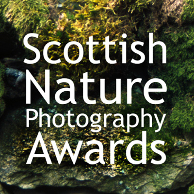 Scottish Nature Photographer Awards logo