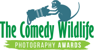 comedy wildlife logo